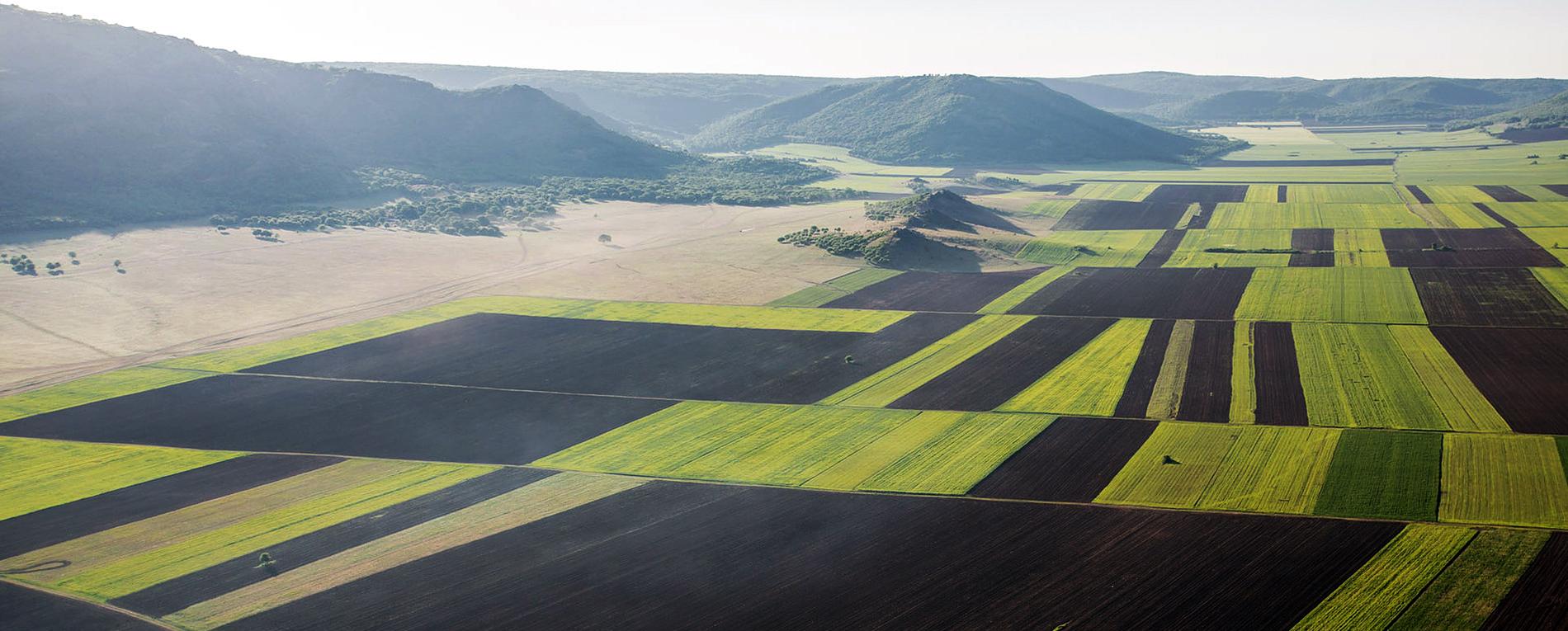 agricultura-irigatii
